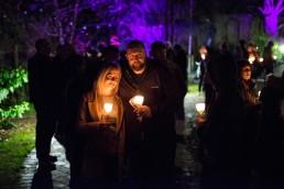 St Luke's Festival of Light